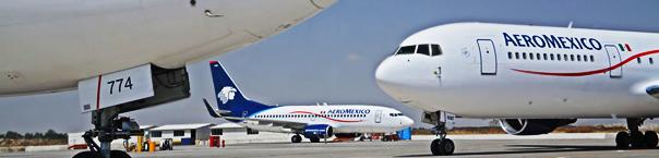 aeromexico_aircraft_fleet