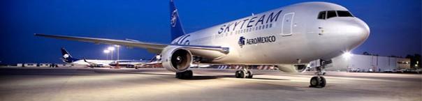 avion_skyteam