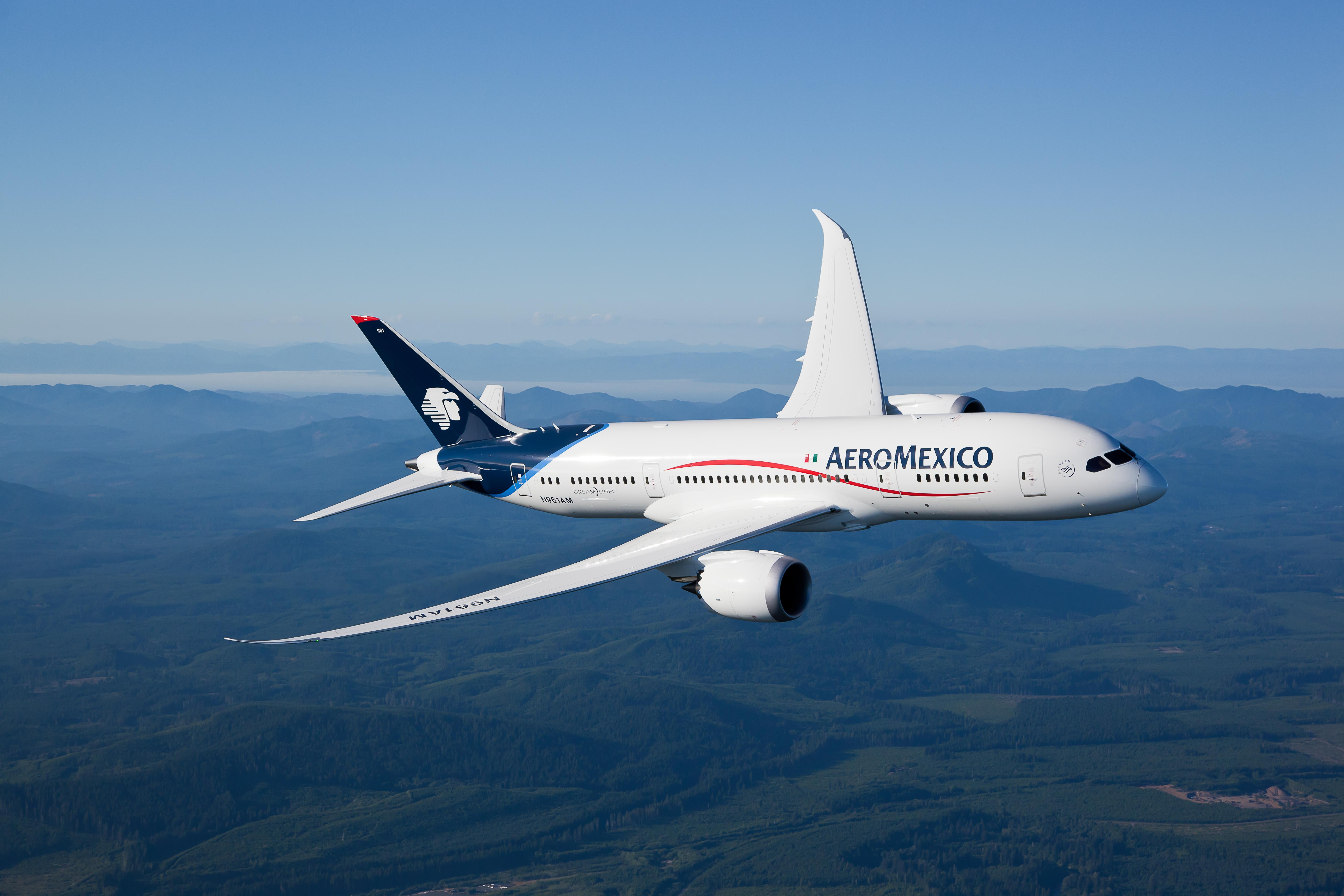 Aeromexico 787 LN 115 Air to Air